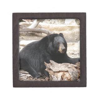 """Black Bear"" by Carter L. Shepard"" Keepsake Box"