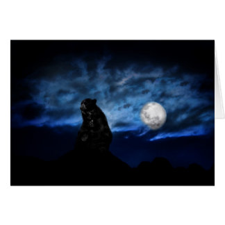 Black bear by moonlight card