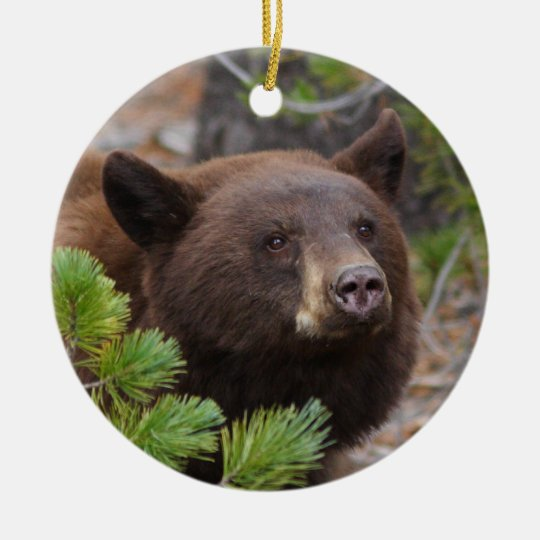 black bear ceramic ornament