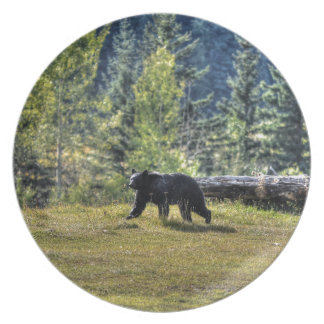 Black Bear Crossing A Ranch Pasture Plate