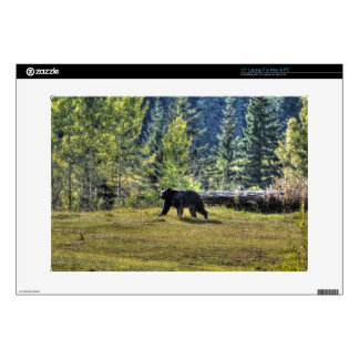 Black Bear Crossing A Ranch Pasture Decals For Laptops
