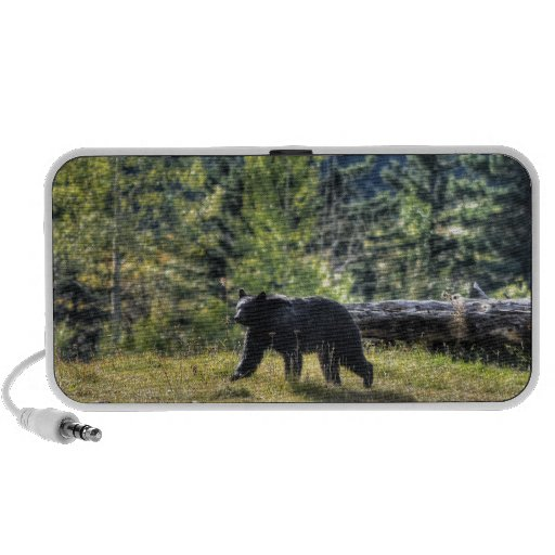 Black Bear Crossing A Ranch Pasture iPod Speakers