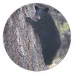 black bear cub dinner plates