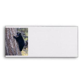 black bear cub envelope