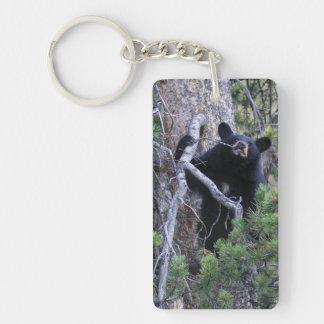 black bear cub keychain