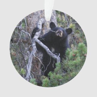 black bear cub ornament