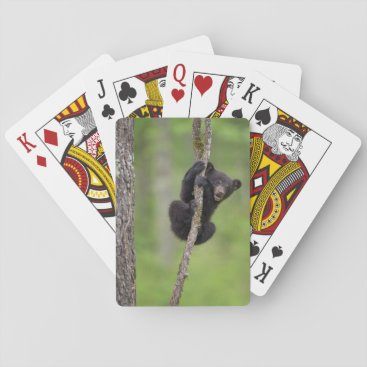 USA Themed Black bear cub playing, Tennessee Playing Cards