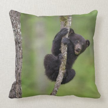 USA Themed Black bear cub playing, Tennessee Throw Pillow