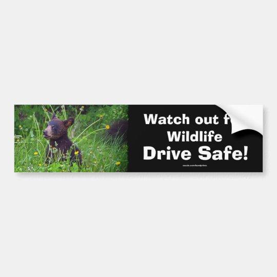 Black Bear Cub Wildlife Supporter Bumper Sticker