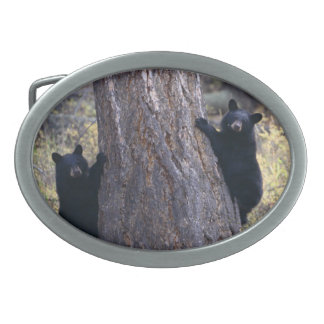 black bear cubs oval belt buckles