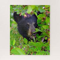 Black Bear Cubs. Jigsaw Puzzle