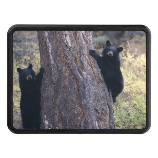 black bear cubs trailer hitch cover