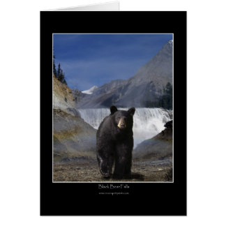 BLACK BEAR FALLS Greeting Cards & Note Cards