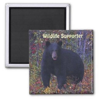 BLACK BEAR Forest Nature Magnet