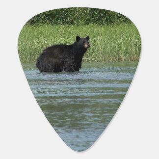 Black Bear Guitar Guitar Pick