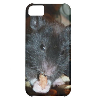 Black Bear Hamster Cover For iPhone 5C