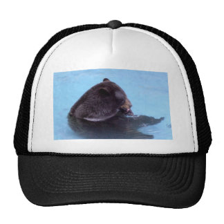 black bear hats