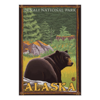 Black Bear in Forest - Denali National Park, Posters