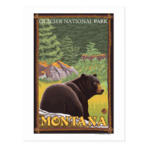 Black Bear in Forest - Glacier National Park, MT Postcard