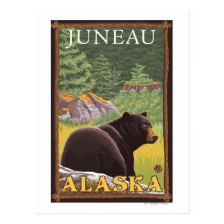 Black Bear in Forest - Juneau, Alaska Postcard
