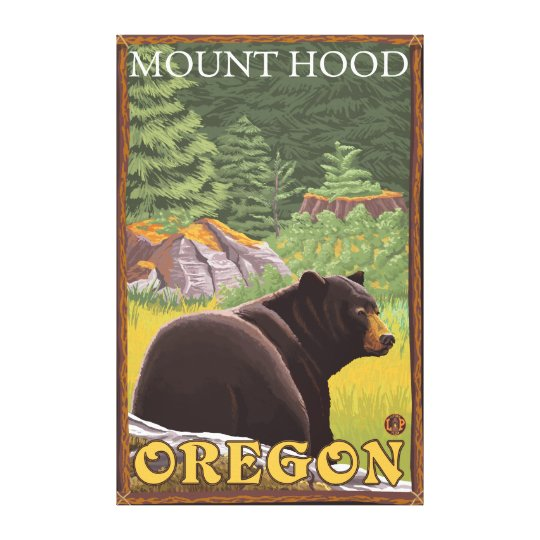 Black Bear in Forest - Mount Hood, Oregon Canvas Print