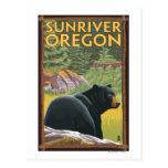 Black Bear in Forest - Sun River, Oregon Post Card