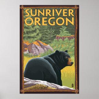 Black Bear in Forest - Sun River, Oregon Poster