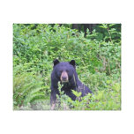 Black Bear in the Woods Gallery Wrap Canvas