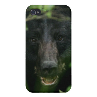Black Bear Cases For iPhone 4