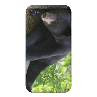 black bear ipod cover