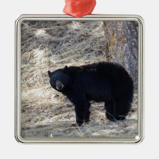 Black Bear Metal Ornament