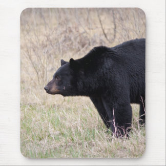 Black Bear Mouse Pad