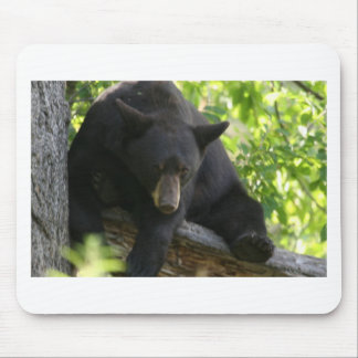 black bear mouse pad