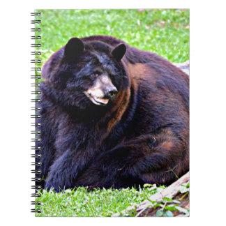 Black Bear Notebook