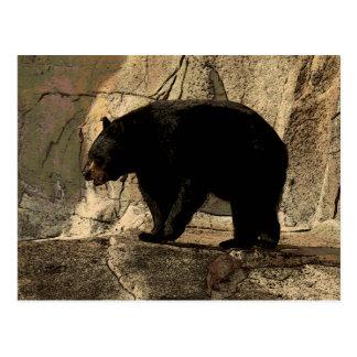 Black Bear (Original Artwork) Postcard