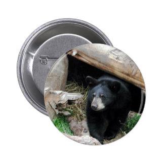 Black Bear Pinback Button