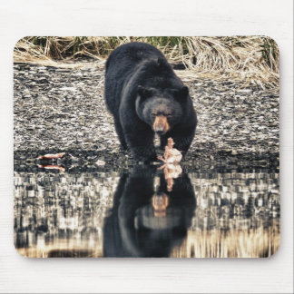 Black Bear Reflections Mouse Pad