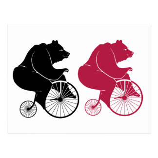 Black Bear Riding Vintage Bike Postcard