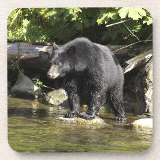 "Black Bear ""Salmon Spotting"" Wildlife Beverage Coaster"