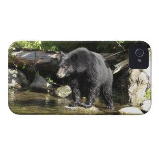 "Black Bear ""Salmon Spotting"" Wildlife iPhone Case"
