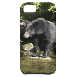 "Black Bear ""Salmon Spotting"" Wildlife Phone Case iPhone 5 Cover"