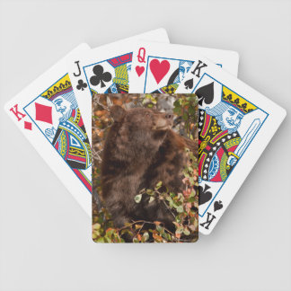 Black bear searching for autumn berries bicycle playing cards