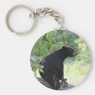black bear sitting in tree basic round button keychain