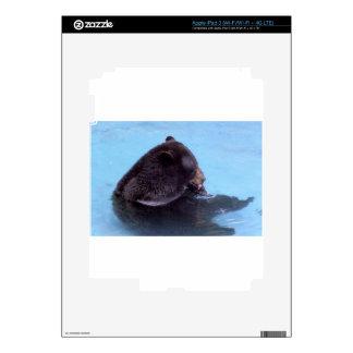 black bear decal for iPad 3