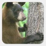 Black Bear Square Stickers