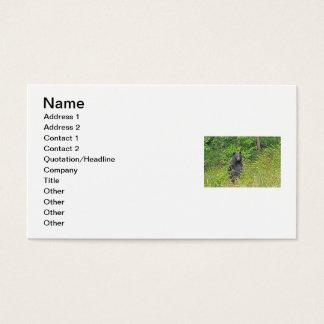 Black Bear Standing Up Business Card