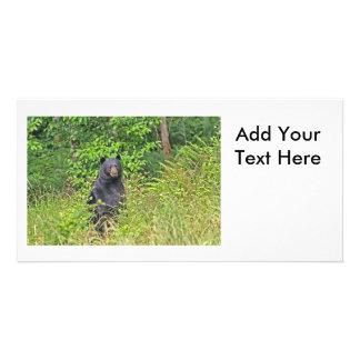 Black Bear Standing Up Card