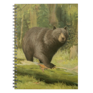 Black Bear Stepping on a Tree Trunk Spiral Notebooks