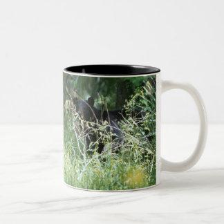 Black Bear Under Cover Two-Tone Coffee Mug