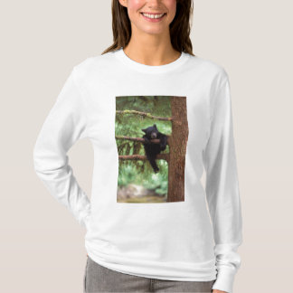 black bear, Ursus americanus, cub in a tree T-Shirt